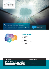 Professional Services Salesforce Case Studies Document