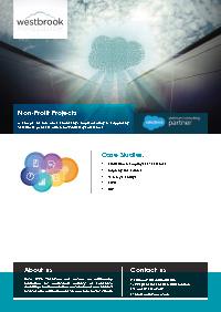 Non-Profit Salesforce Case Studies Document